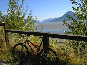 Bird To Gird View Of Turnagain Arm