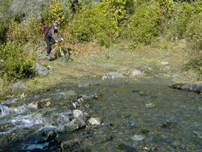 Peters Creek Stream Crossing
